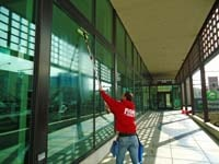 Fish Window Cleaning Billings Cleaning Exterior Business Windows