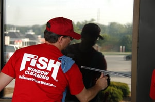 FISH Window Cleaner Cleaning Window with a Squeegee