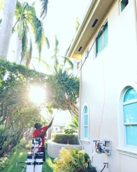 Fish Window Cleaning Miami Beach Cleaning Residential Windows With Pole
